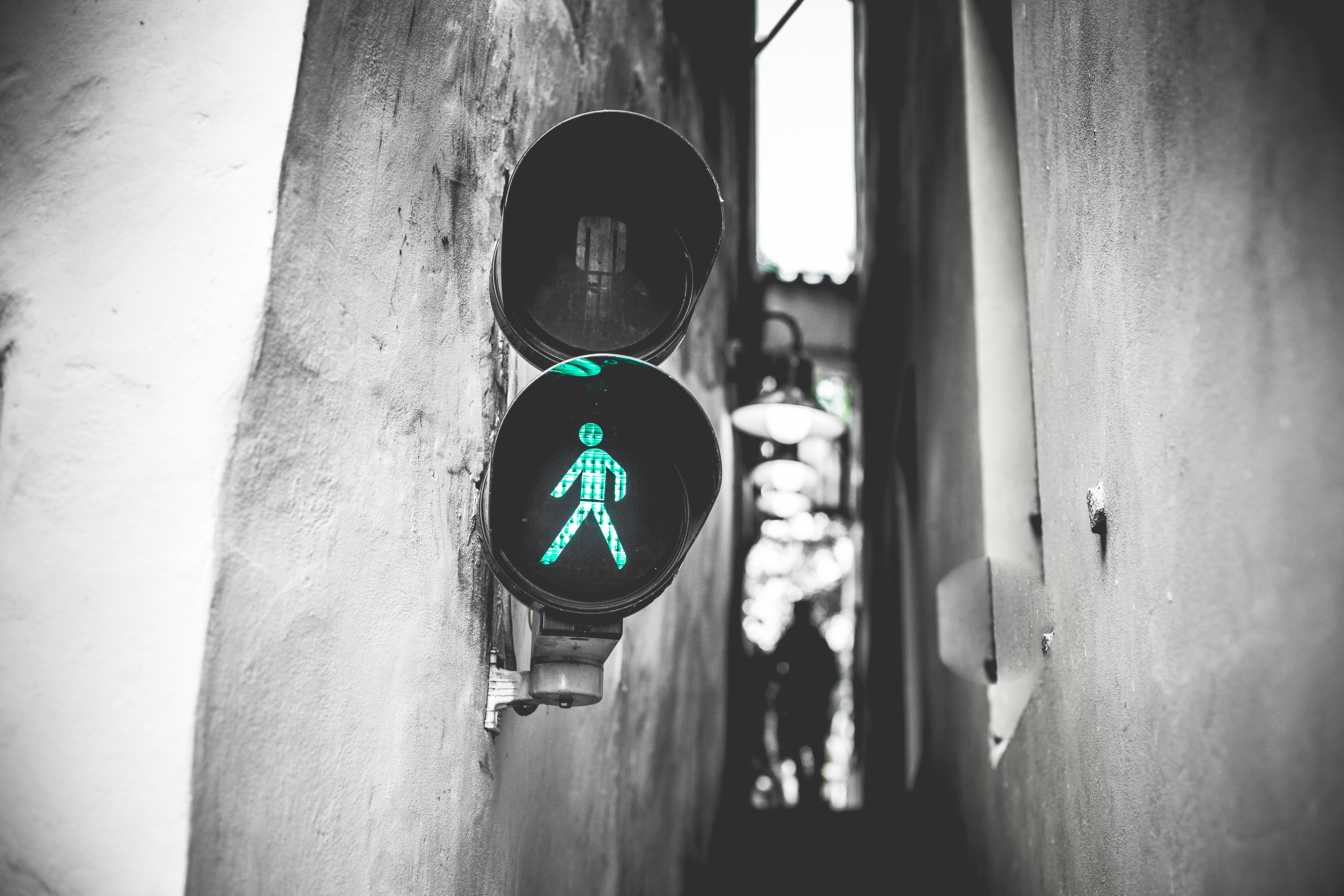 12-and-walk-you-safely-through-the-marketing-jungle